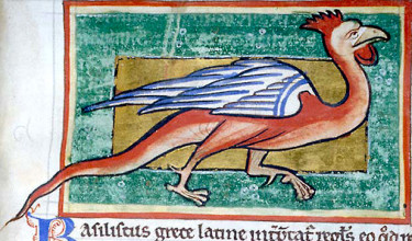 Sometimes a basilisk (1) was described as having a cock's head.